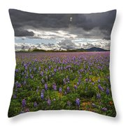 Porter Ranch Wildflowers   Throw Pillow