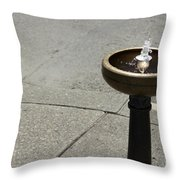 Portland Drinking Water Fountain Throw Pillow