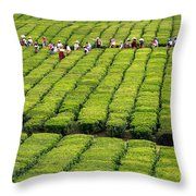 Porto Formoso Tea Gardens Throw Pillow