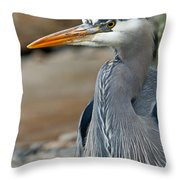 Portrait Of A Blue Heron Throw Pillow