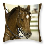Portrait Of A Brown Horse Throw Pillow