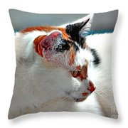 Portrait Of A Calico Throw Pillow