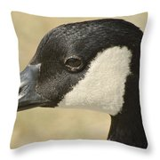 Portrait Of A Canadian Goose  Throw Pillow