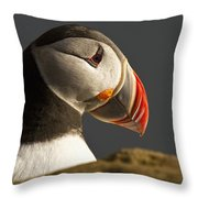 Portrait Of A Colorful Puffin Iceland Throw Pillow