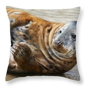 Portrait Of A Common Seal  Throw Pillow