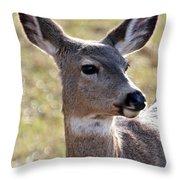 Portrait Of A Deer Throw Pillow