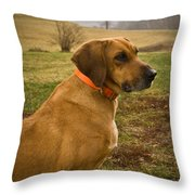 Portrait Of A Dog Throw Pillow