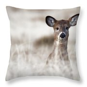 Portrait Of A Fawn Throw Pillow