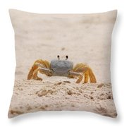 Portrait Of A Ghost Crab Throw Pillow