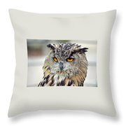 Portrait Of A Great Horned Owl II Throw Pillow