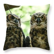 Portrait Of A Pair Of Owls Throw Pillow