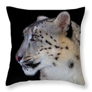 Portrait Of A Snow Leopard Throw Pillow