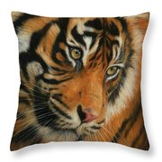 Portrait Of A Tiger Throw Pillow by David Stribbling