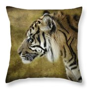 Portrait Of A Tiger  Throw Pillow