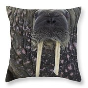 Portrait Of A Walrus Throw Pillow