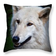 Portrait Of A White Wolf Throw Pillow