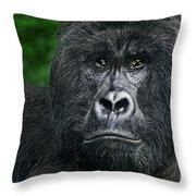 Portrait Of A Wild Mountain Gorilla Silverbackhighly Endangered Throw Pillow