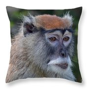 Portrait Of An Adult Patas Monkey II Throw Pillow