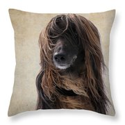Portrait Of An Afghan Hound Throw Pillow