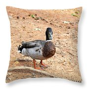 Portrait Of An Alabama Duck 2 Throw Pillow