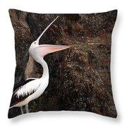 Portrait Of An Australian Pelican Throw Pillow