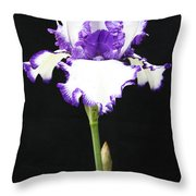 Portrait Of An Iris Throw Pillow