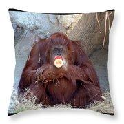 Portrait Of An Orangutan Throw Pillow