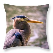 Portrait Of Ardea Herodias Throw Pillow
