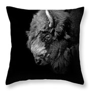 Portrait Of Buffalo In Black And White Throw Pillow