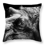 Portrait Of Hippo In Black And White Throw Pillow
