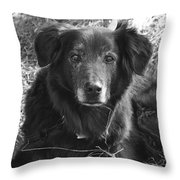 Portrait Of Jake Throw Pillow