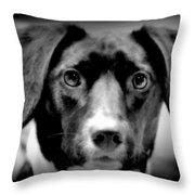 Portrait Of Man's Best Friend II Throw Pillow