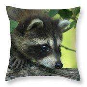 Portrait Of Mischief Throw Pillow