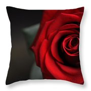 Portrait Of Rose Throw Pillow