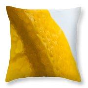 Portrait Of The Edge Of A Lemon Throw Pillow