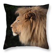 Portrait Of The King Of The Jungle  Throw Pillow