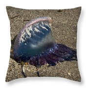 Portuguese Man-o War Beached Throw Pillow