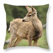 Pose In The Rockies Throw Pillow