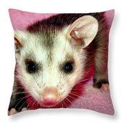 Poser Possum Throw Pillow