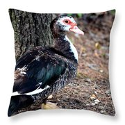 Posing Drakelet Throw Pillow