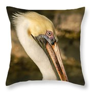 Posing Pelican Throw Pillow