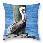 Posing Pelican Throw Pillow