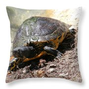 Possible Cooter Turtle Throw Pillow