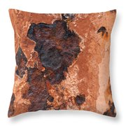 Post In Decay  Throw Pillow