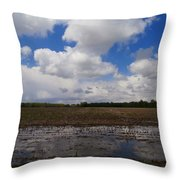 Post Storm Reflections Throw Pillow
