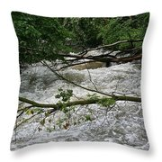 Post Storm Throw Pillow