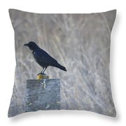 Posted Crow Throw Pillow