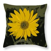 Posterized Smooth Oxeye Throw Pillow