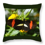Postman Butterfly 2 Throw Pillow
