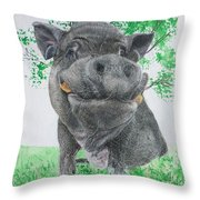 Potbellied Pig Pet Portraits Watercolor Memorial Made To Order 5x7 Inch Throw Pillow